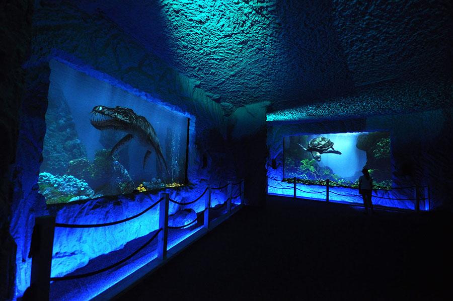 PrehistoryczneOceanarium04