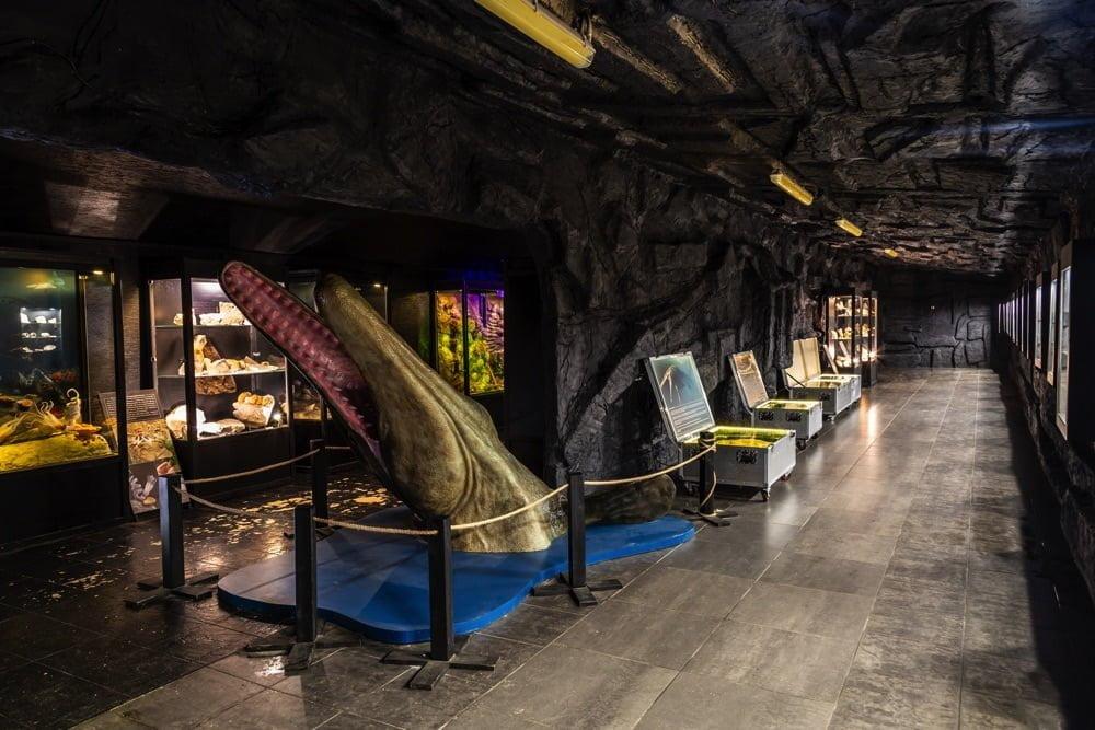 Muzeum Dinozaurów w Bałtowie
