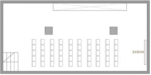 Teatralny - 20 osób