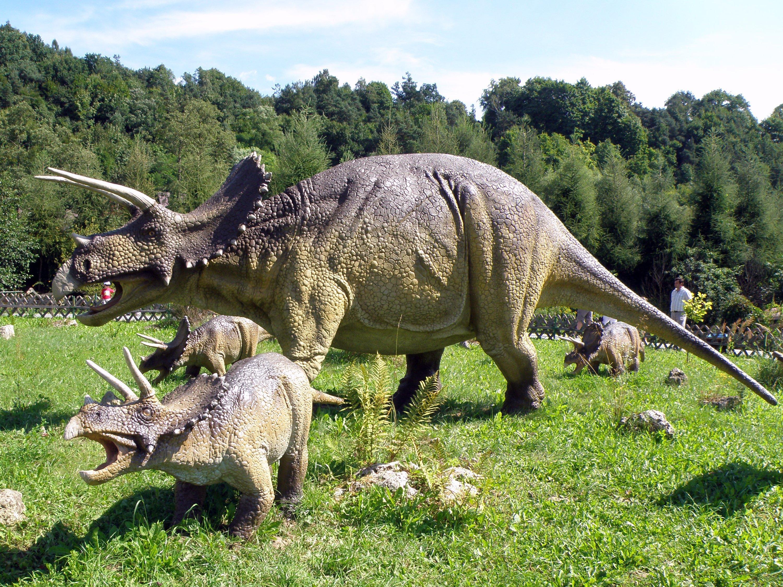 Triceratops w Juraparku w Bałtowie