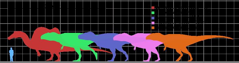 porównanie Tyranozaura rexa