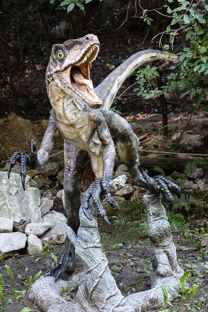 Welociraptor budowa
