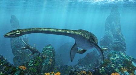 Plesiosaurus (dolichodeirus) – przodek Nessi