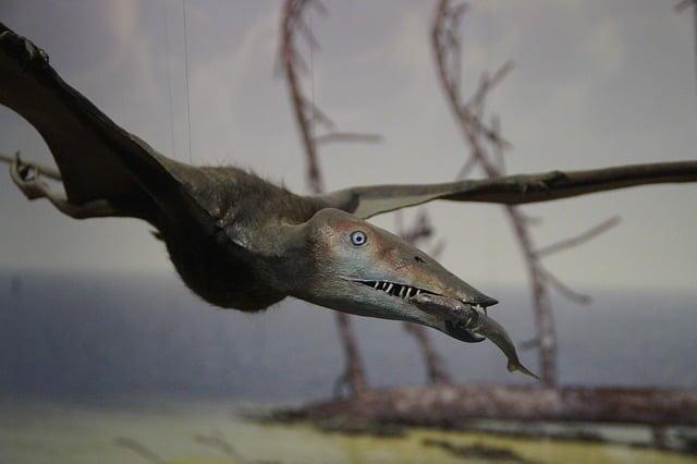Latający dinozaur